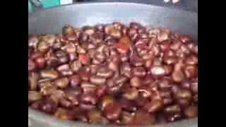 preview picture of video 'Zurich Street Food - Roasted Chestnuts (Heissi Marroni)'