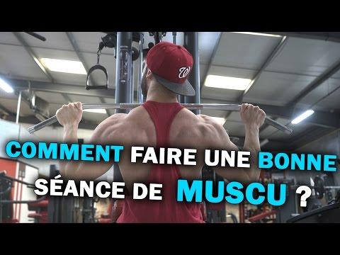 Les images du groupe des muscles sur la barre fixe