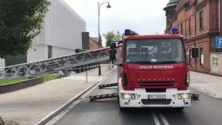 Wideo1: Interwencja strażaków przy SP3 w Lesznie. Konieczna była przycinka gałęzi i konarów suchego drzewa.