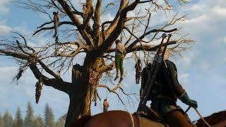 The Witcher (Ведьмак), Обзор Ведьмак 3: Дикая Охота - после 12 часов. PC, 60fps. The Witcher 3: Wild Hunt