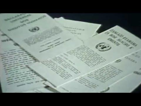 Declaração Universal dos Direitos Humanos completa 70 anos. Saiba como ela afeta a sua vida