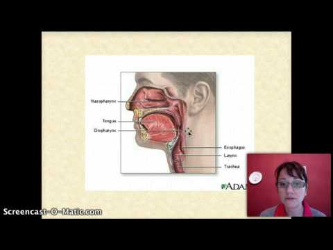 Wie die Prostata eigenen Finger zu massieren