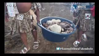 Pastor Mjosty idombolo Khuzani Mpungose Igcokamelisha Thuso Phala dance