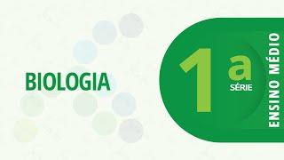 1ª Série EM – Biologia: Fluxo de energia e matéria nos ecossistemas – 26/10/2020