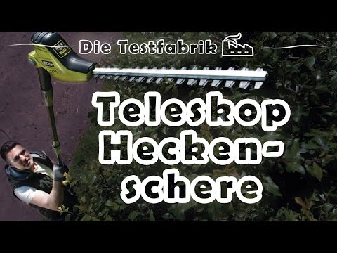 ✂️ Teleskop Heckenschere Test – 🏆 Top 3 Teleskop Heckenschere im Test
