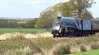 preview picture of video 'No 60007 Sir Nigel Gresley on the Dartmouth Express at Powderham Castle 19th April 2014'