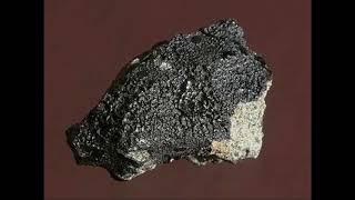 火星陨石的价值在于发现了有机碳?