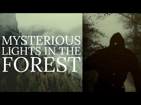 THE PARANORMAL BIGFOOT   Strange Things Are Happening in the Woods   Mountain Beast Mysteries 112