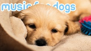 Music for Dogs! Lullabies to Calm Your Dog! Helped 10 Million Dogs! NEW