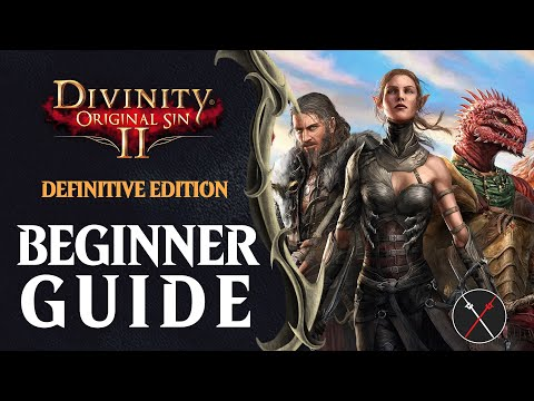 Beginner's Guide For Divinity Original Sin 2 Definitive Edition