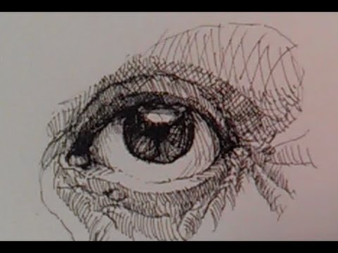 Portrait facial features mathematainment pen and ink drawing tutorials how to draw a realistic eye part i ccuart Image collections