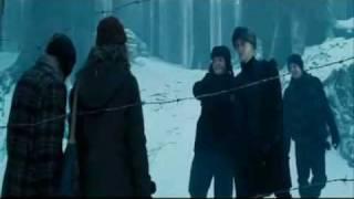Draco Malfoy - Womanizer
