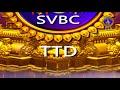 శ్రీవారి సహస్రదీపాలంకరణ సేవ | Srivari Sahasradeepalankarana Seva | 18-01-19 | SVBC TTD - Video
