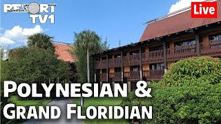 🔴Live: An Evening at Disney's Polynesian & Grand Floridian Resorts   Walt Disney World Live Stream