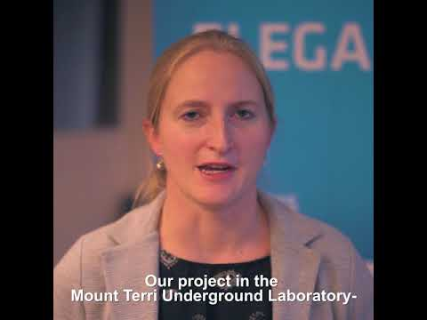 CO2 injection and caprock integrity in Mount Terri Underground Lab