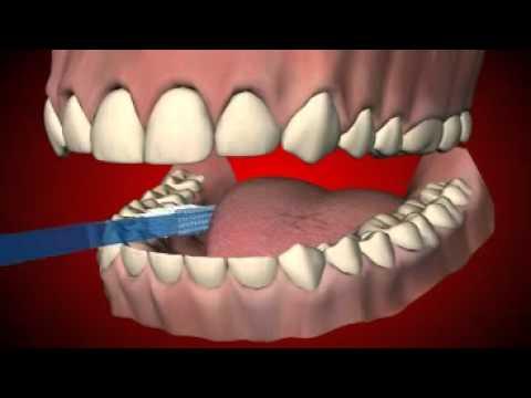 Cum ne spalam pe dinti