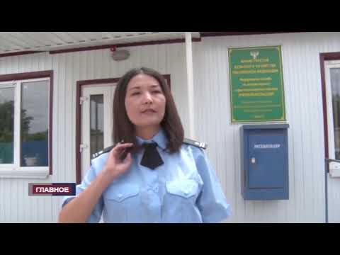 Управлением Россельхознадзора осуществлен надзор в сфере оборота лекарственных препаратов для ветеринарного применения на территории Республики Калмыкия