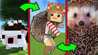 Как Менялась Девушка Ёжик и её Жизненный Цикл в Майнкрафт Эволюция Minecraft Троллинг Мультик Майн