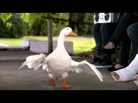 Aflac Commercial (2011) (Television Commercial)