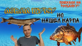 Ульяновск рыбалка форум отчеты о рыбалке