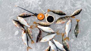 Отводной поводок для зимней рыбалки