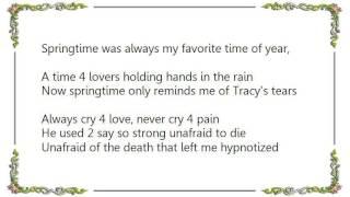 Ironik - Sometimes It Snows in April Lyrics