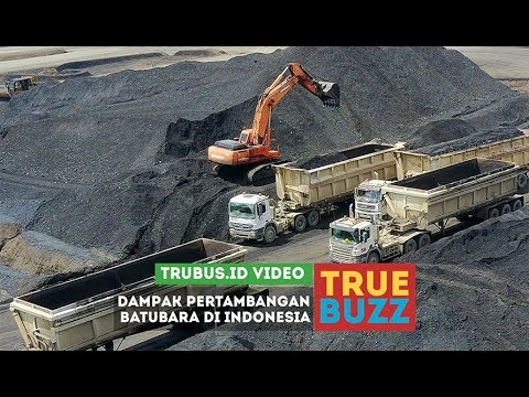 Dampak Pertambangan Batubara di Indonesia