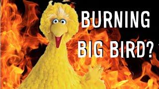BURNING BIG BIRD (Prank?)