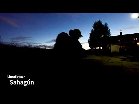 Camino de Santiago Day 17: Moratinos -- El Burgo Ranero