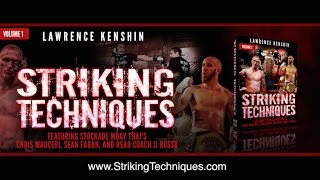 Striking Techniques Volume 1 Book - MMA Shredded