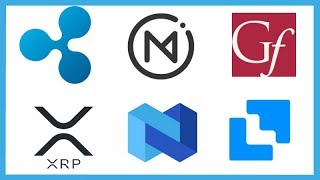 Omni Integrates XRP - Ripple Coil Gates Foundation - Nexo XRP Loans - Liquid XRP Trading & Loans