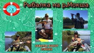 Рыбалка на мокше только в рязанской области
