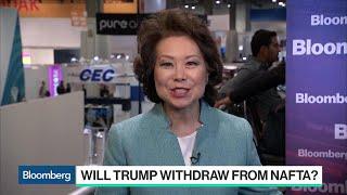 Elaine Chao on Transportation Innovation, Drones and Nafta