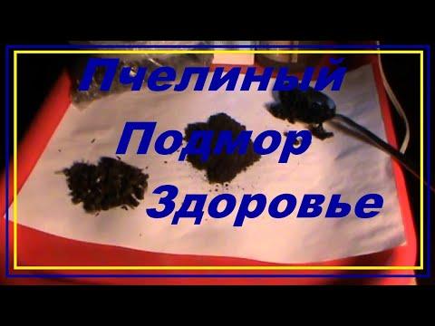 Грецкие орехи с медом для мужчин рецепт для потенции