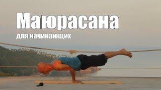 Йога для начинающих Маюрасана видео различных вариантов сложности.