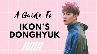 A GUIDE TO iKONS KIM DONGHYUK (DK)