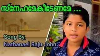 Snehamekeedename En manam  neerumbol - Malayalam Christian Devotional Solo Song Nathanael Raju John