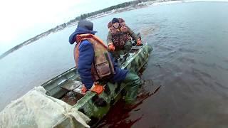 Рыбалка летом на двине северной семгу