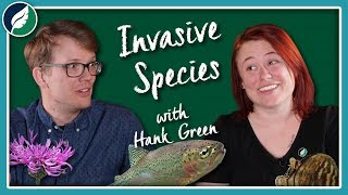 Why Do Invasive Species Get So Much Hate? (Ft. Hank Green)