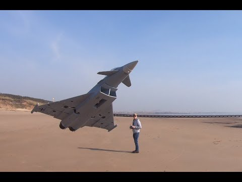 freewing-typhoon-and-camera-man-with-fast-reactions