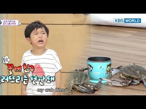 [1Click Scene] Seungjae tries his best to rescue the crabs! (The Return of Superman Special)
