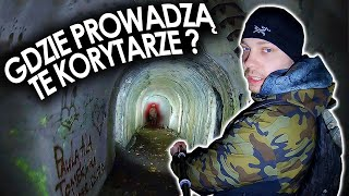 Wnętrzności fortu Beniaminów – Urbex History