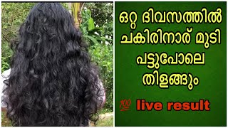 മുടി Soft And Silky ആവാൻ || Home Remedy For Frizzy And Rough Hair In Malayalam