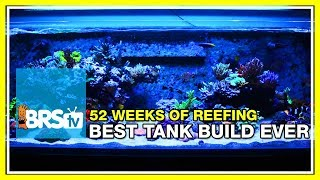 Week 1: Our Best Reef Tank Build Yet | 52 Weeks of Reefing #BRS160