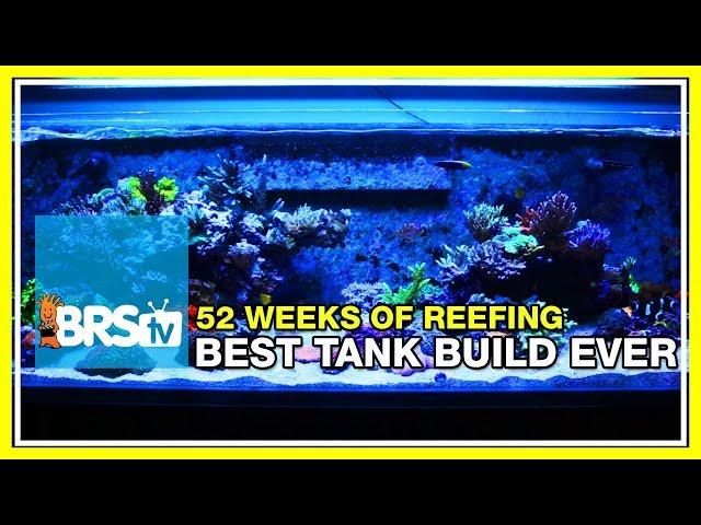 Week 1: Our Best ReefTank Build Yet | 52 Weeks of Reefing #BRS160