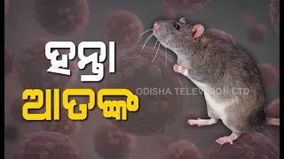 Hantavirus-What Is It & How Does It Spread