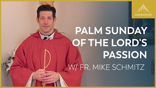 Palm Sunday of the Lord's Passion – Mass with Fr. Mike Schmitz