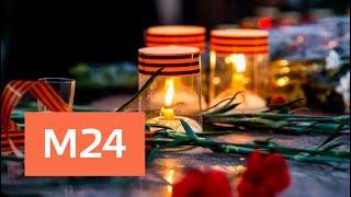 """Москвичи зажгли тысячи """"Свечей памяти"""" в знак скорби о погибших в ВОВ - Москва 24"""