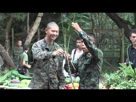 Trénink mariňáků v džungli