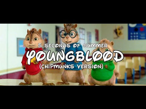 5 Seconds Of Summer - YOUNGBLOOD (Chipmunks Cover)